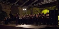 TNCS at the Malta Arts Festival 2013 - Photo by Elisa von Brockdorff